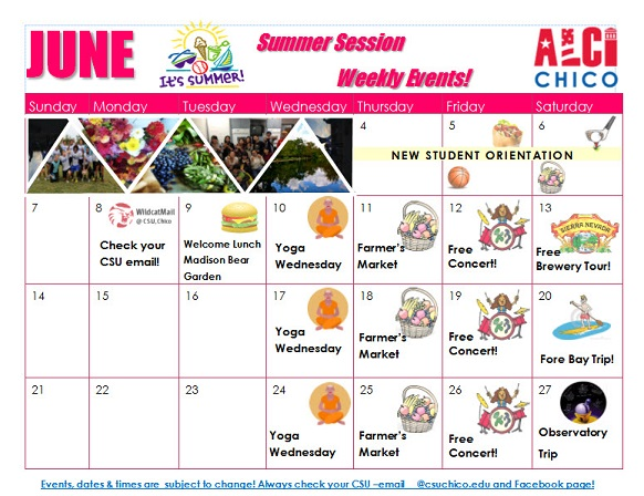 Summer Session Calendar ALCI Chico graphic PDF download