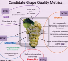 Chemical Characterization of California Grapes