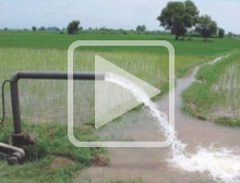 Decorative: image from the irrigation and cooperation presentation