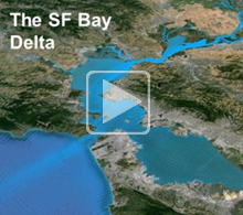 "Decorative: image from ""what is the bay delta"" presentation"
