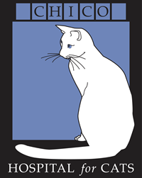 Logo of Chico Hospital for Cats, an OLLI Silver-Level Business Sponsor