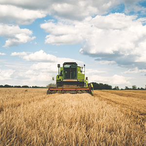 Photo of harvester in a grain field.