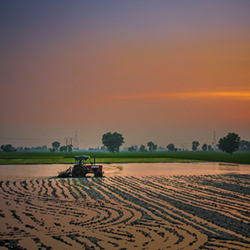 Photo of tractor in a field at sunset.
