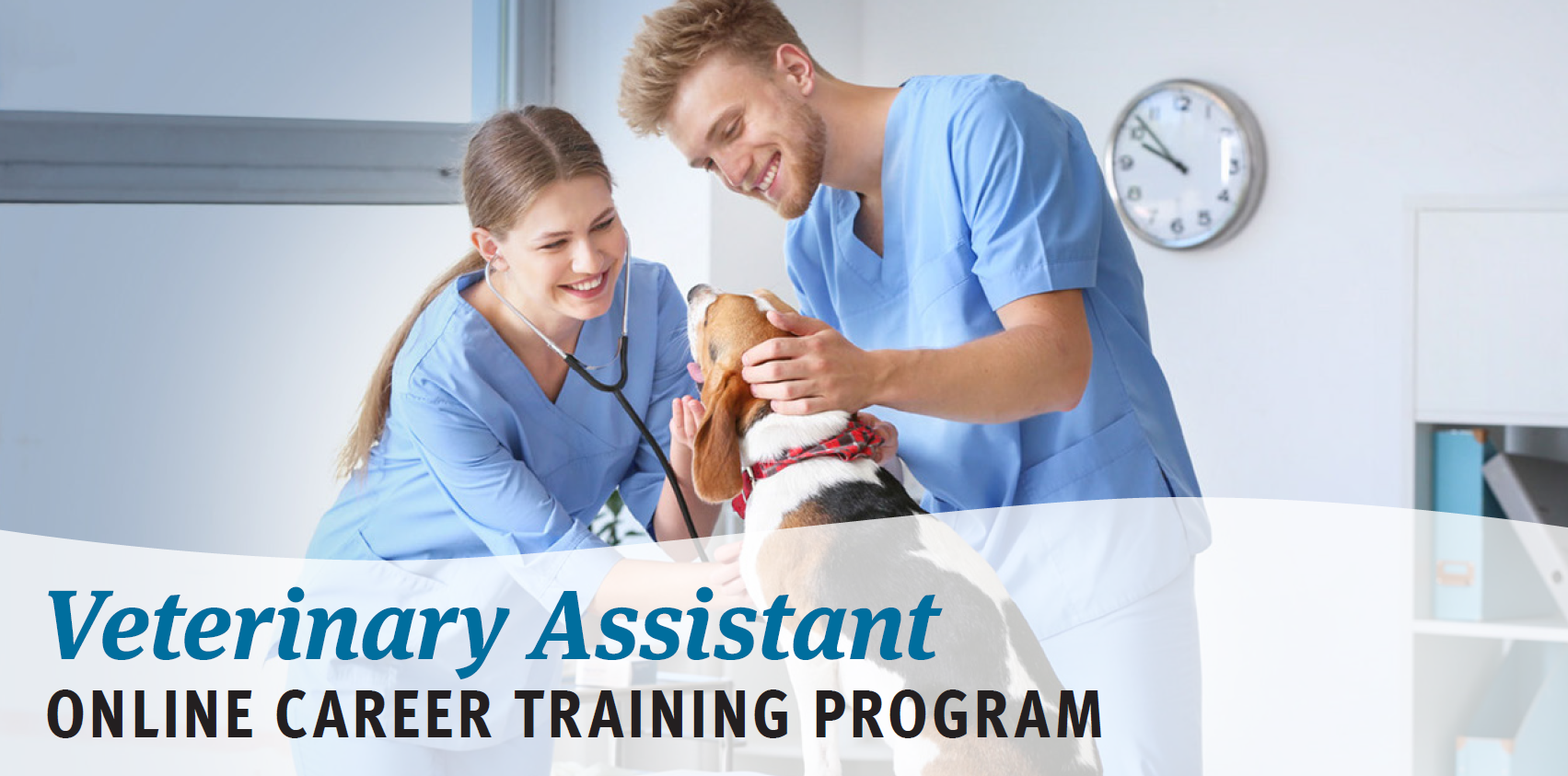Veterinary Assistance Online Career Training Program