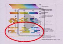 Bioinformatics slide thumbnail