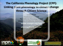 The California Phenology Project