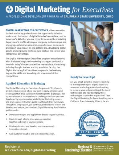 Digital Marketing for Executives Brochure