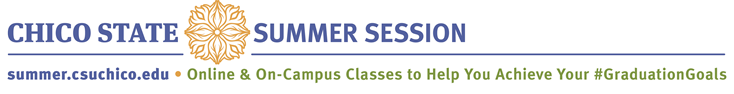 Summer Session Logo