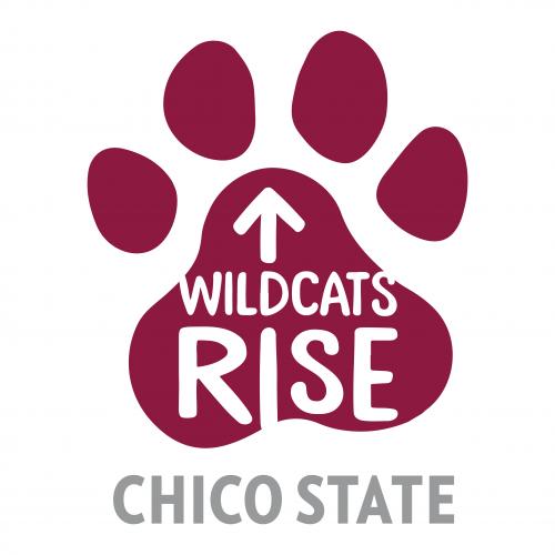 Wildcat Rises